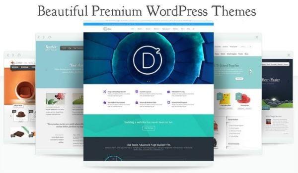 Buy a theme or design the web yourself - HostNamaste