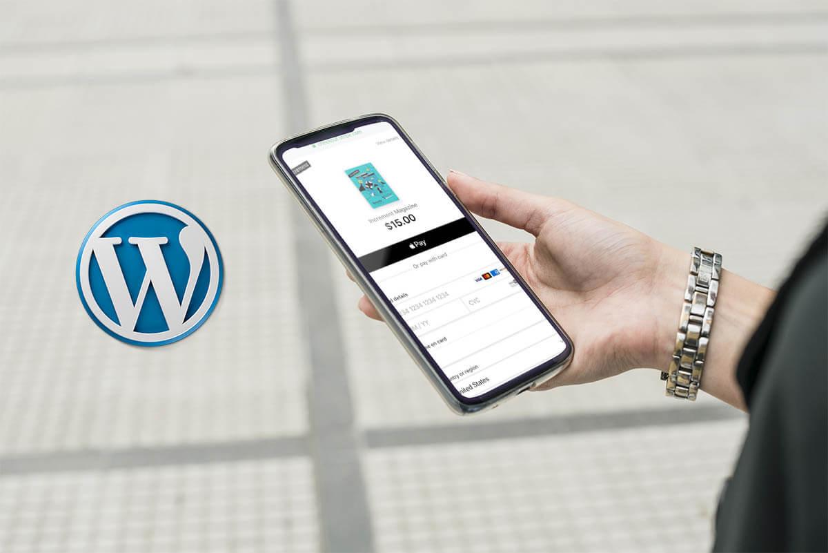 The 5 Best e-commerce Payment Gateways for WordPress – HostNamaste