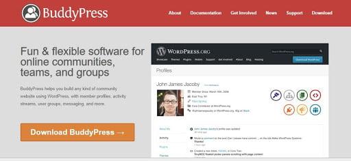BuddyPress - The Best Social Network Application Hosting 2021 – HostNamaste