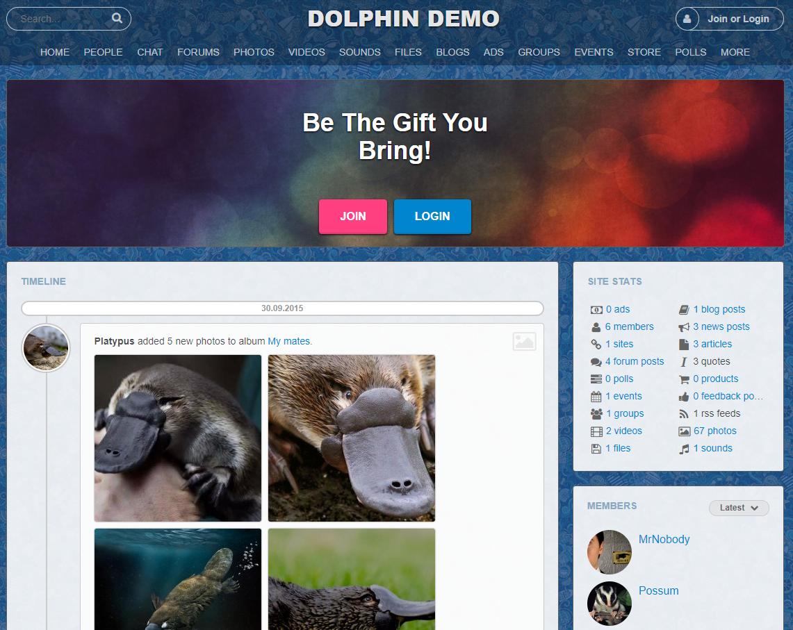 Dolphin - The Best Social Network Application Hosting 2021 - HostNamaste